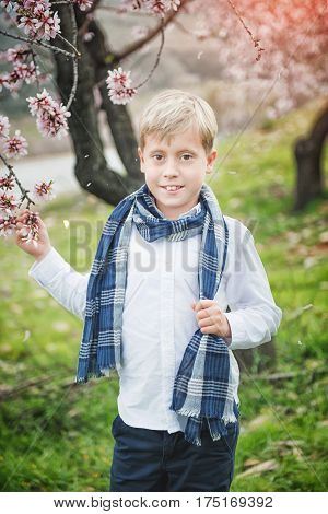 cute young boy in a flowering almond orchards