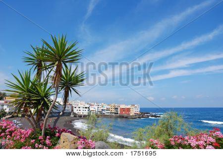 Puerto Cruz Beach