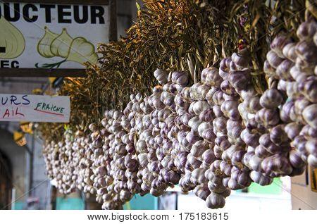 French garlic hanging display at the farmer's market