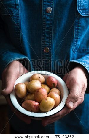 Potatoes in a white bowl in the hands of a man in a blue shirt vertical