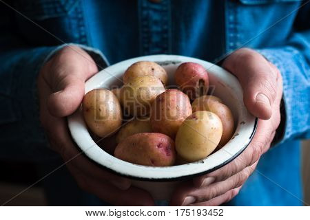 Potatoes in a white bowl in the hands of a man in a blue shirt closeup horrizontal