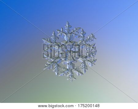 Macro photo of real snowflake: large snow crystal of stellar dendrite type with long, ornate arms and many side branches with frozen bubbles of rime, and massive central hexagon, divided by six sectors, glitters on pale blue - gray - green gradient