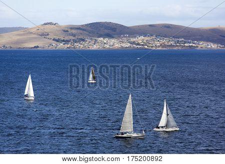 Yachts sailing in River Derwent (Hobart Tasmania).