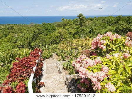 The view of the garden with a jungle landscape below in Jamaica.