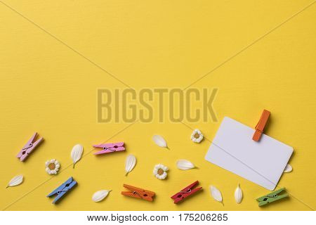 Spring or summer background with copy space for text: blank stationary template / invitation mockup chamomiles and petals bright multicolored clothespins. Top view. Flat lay.