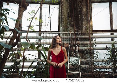 View from below of pretty woman in red dress which posing in greenhouse and looking away