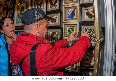 Moscow, Russia - February 25, 2017: A couple of visitors are examining and photographing a stand with dried butterflies and beetles