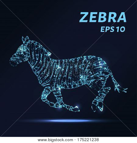 Zebra Consists Of Points, Lines And Triangles. The Polygon Shape In The Form Of A Silhouette Of Zebr