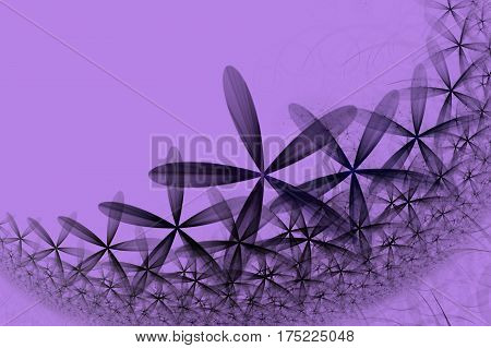 The fractal and colorful a abstract daisy