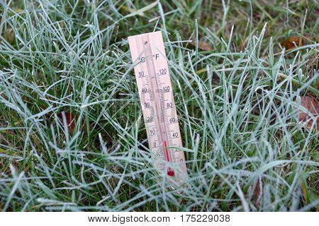 Thermometer is in the green grass covered with hoarfrost and shows subzero temperature