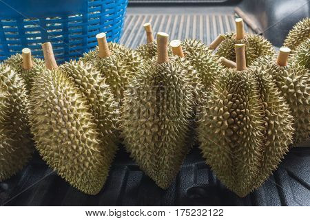 Durian Fruit From Thailand