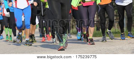 Group Of Male And Female Runners During Sports Event