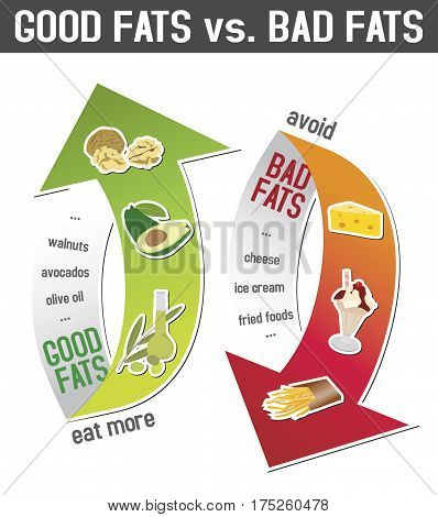 Good fats and bad fats polyunsaturated and monounsaturated fats vs. saturated or trans fatty acids; infographic