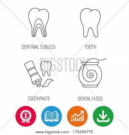 Tooth, dentinal tubules and dental floss icons. Toothpaste linear sign. Award medal, growth chart and opened book web icons. Download arrow. Vector