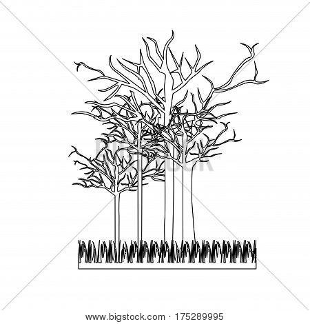 figure leafless trees icon, vector illustraction design image