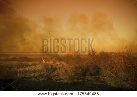 Strong prairie fire with large clouds of choking smoke erupted in southern steppe. Ecological catastrophy.
