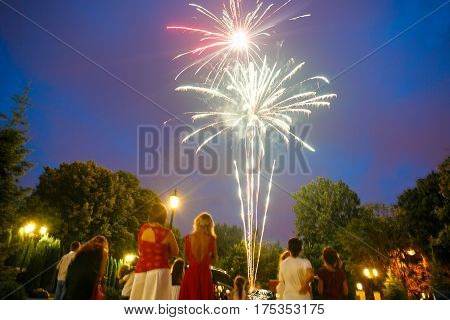 A view on the sparkling firework in the evening sky