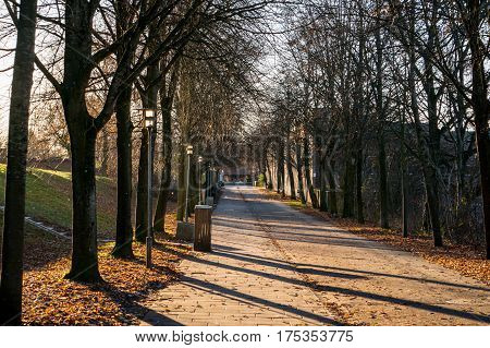 Visibility down through an avenue with trees on both sides. To the right glimpsed a sign that reminds you that this is also a way to school