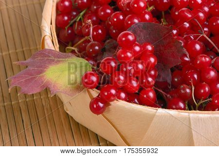 Guelder-rose berries in a wattled basket close up