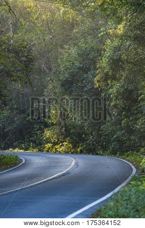 landscape view of dry tropical evergreen forest poster