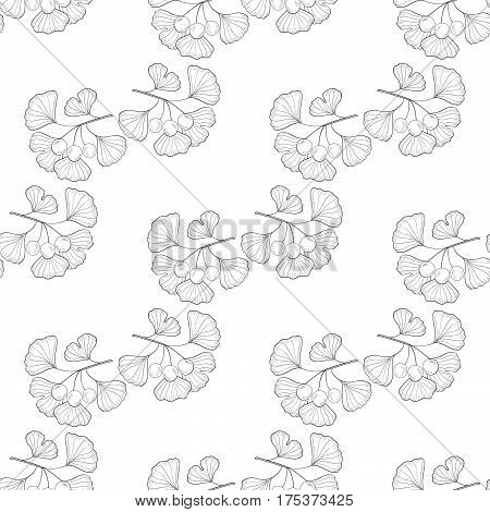 Ginkgo Biloba plant leaf branch berry. Seamless pattern medicinal plant. Hand drawn sketch illustration. Ingredient for hair and body care cream lotion treatment.