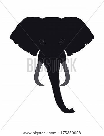 Elephant Head Front View. This Silhouette May Be Used For Your Logo