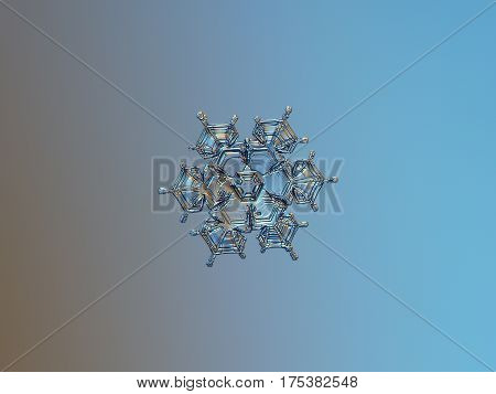 Macro photo of real snowflake: medium size snow crystal of star plate type (approximately 3 millimeters from tip to tip) with six short, sharp arms and glossy, relief surface, glittering on smooth brown - blue gradient background.