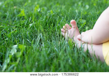 Little baby legs on a green lawn in the park. On open air. Healthy lifestyle. Close-up. Copy-space. Reunion with nature.