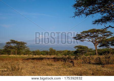 Kilimanjaro - Kibo And Mawenzi Peaks, Roof Af Africa