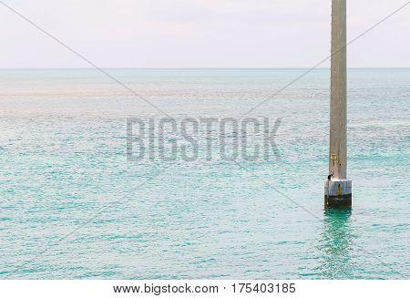 Power Pole With Comorant