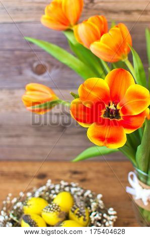 A beautiful tulips and Easter holiday eggs decoration. Fresh yellow tulips for spring seasons.