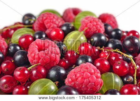 Various Kinds Of Fresh Berries Close Up On A White