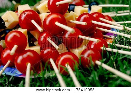 Cherry Tomatoes Olives Cheese On Wooden Stick Appetizer, Picnic Outdoors, Catering Buffet At Summer