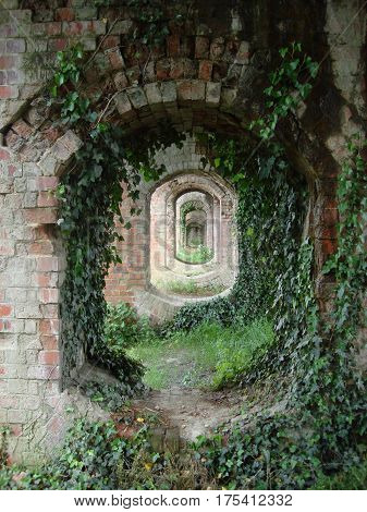 Ivy Covered Arches Under a Bridge in Gloucestershire.