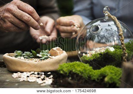 Senior People Terrarium Nature Concept