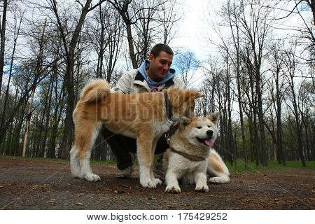 Akita inu female and puppy posing with young man in public park