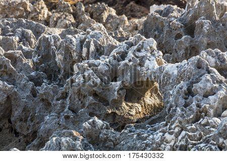 Marine Jagged Rocks