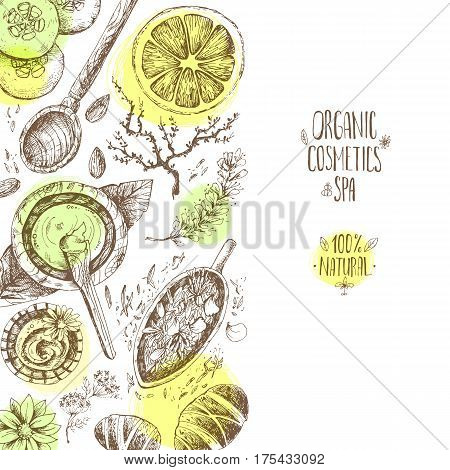Hand drawn vector background, organic cosmetics, spa. Left composition. Natural herbal products, citrus, cucumber, zucchini, flower petals, chamomile almond Vintage engraving sketchy style