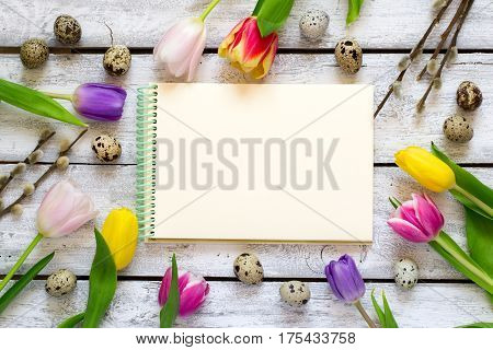 Easter background with tulips eggs and pussy. Top view with copy space