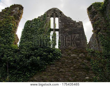 Window In Ruins Of Bridgetown Priory At Castletownroce In Cork County Ireland