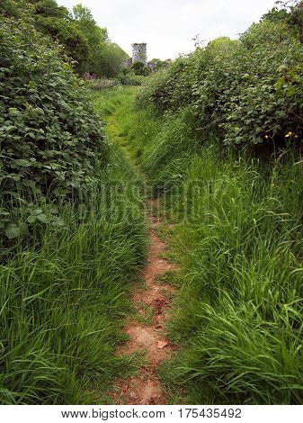 Path Through Grass To Stone Tower In Ireland