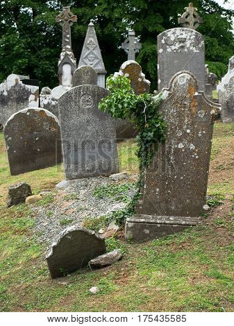 Tombstones at an old cemetery near Castletownroche in Cork County Ireland.