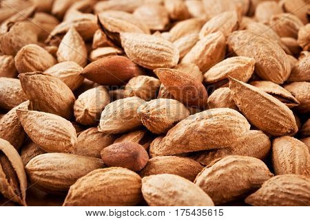 Many almonds in woody shell close-up, horizontal