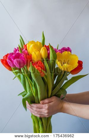 Bouquet Of Tulips Isolated On White Background In Yong Woman Hands.