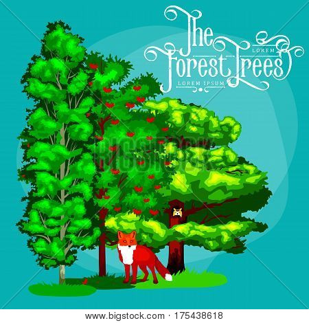Cartoon vector set trees outdoor park. Outdoor trees in the park with branch, leafs. Wild forest plants animals.Pine Tree with branch leafs in the wild forest outdoors. Isolated ecology natural wood
