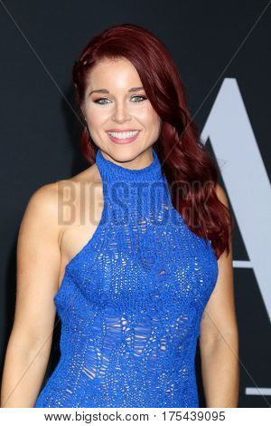 LOS ANGELES - FEB 2:  Erin Robinson at the