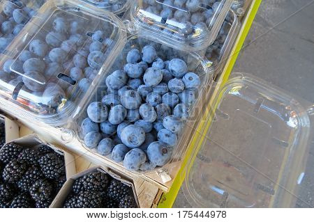 Blueberry (blueberries) at the market in Bar-city, Montenegro