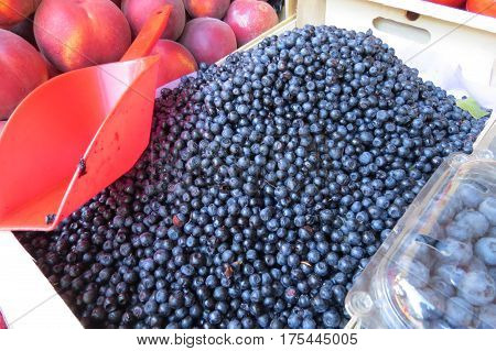 Bilberry (bilberries) at the market in Bar-city, Montenegro