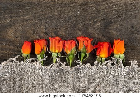 red roses on rustic wooden background Valentines Day background