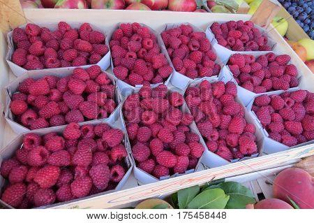Fresh raspberry (raspberries) at the market in Bar-city, Montenegro